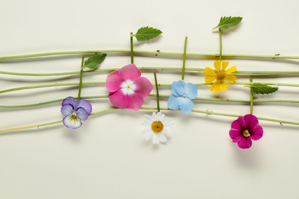 Music notes of flowers on paper