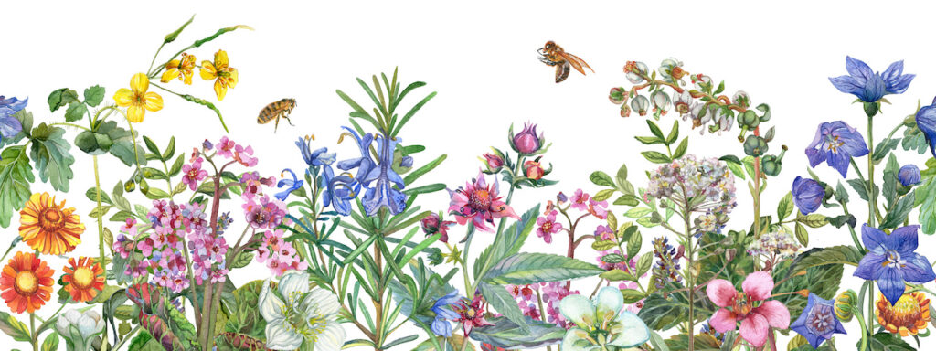 Purpose is to be beautiful and calming. Artistic depiction of bee above flowers