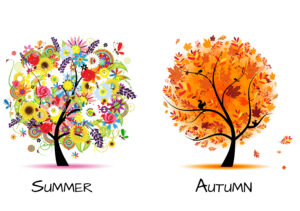 Artistically drawn trees on in Summer and one in Autumn